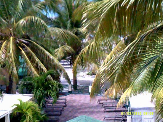 Atrium Beach Resort and Spa: view