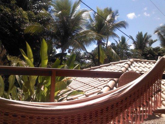 Pousada Bahia Bella: Vista natureza