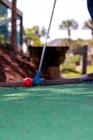 Fiesta Falls Miniature Golf: Get your golf on