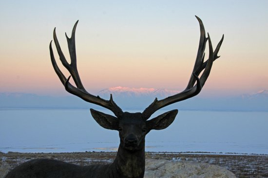 Antelope Island State Park : Visitors center view