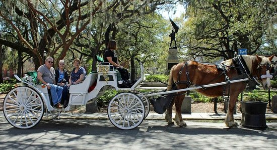 Photo1 Jpg Picture Of Private Horse Drawn Carriage Tour Savannah