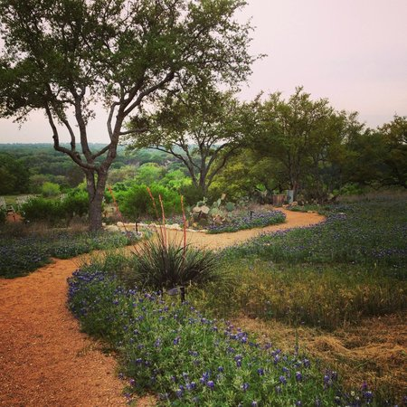 Sage Hill Inn Above Onion Creek: The bluebonnet strewn path to the overlook