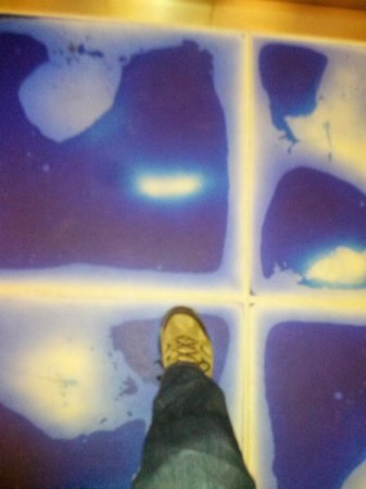 Aloft San Jose Hotel: Squishy elevator floor is a must see!