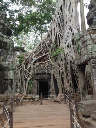 Angkor Adventure Travel