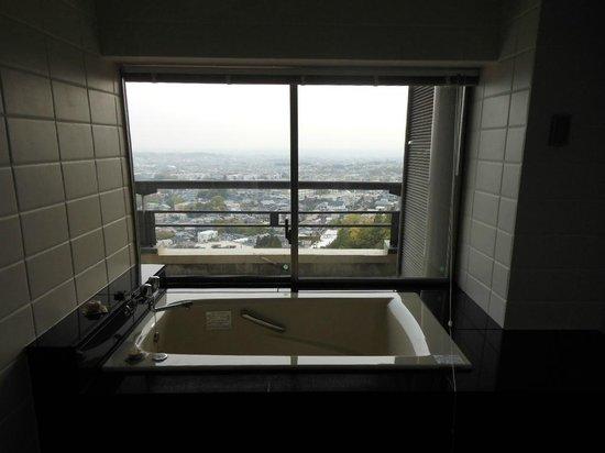 Mino Kanko Hotel: バスルームからの眺め