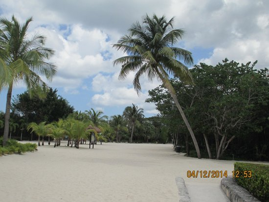 Chankanaab Beach Adventure Park: park