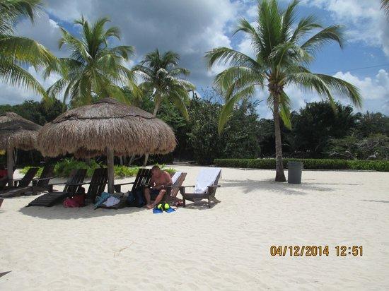 Chankanaab Beach Adventure Park: our home for the day BEATIFUL