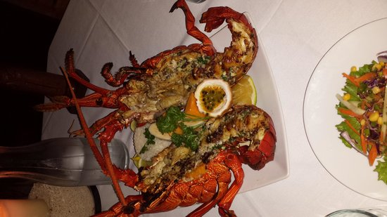 Paradise Cove Restaurant: what a beautiful lobster!