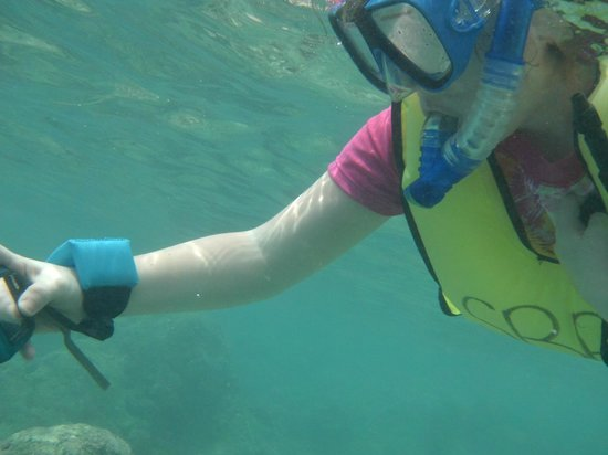 Hanauma Bay Nature Preserve: our kid taking pix