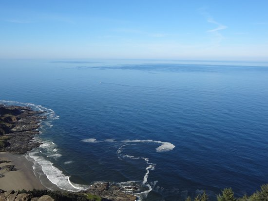 Cape Perpetua Scenic Area : View from the top