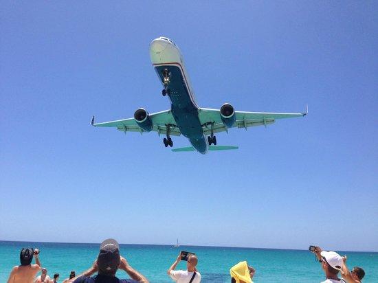 The Westin Dawn Beach Resort & Spa, St. Maarten: More Fence Surfing