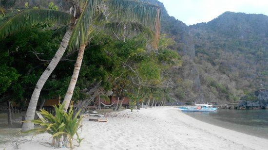 Sangat Island Dive Resort : Beach view