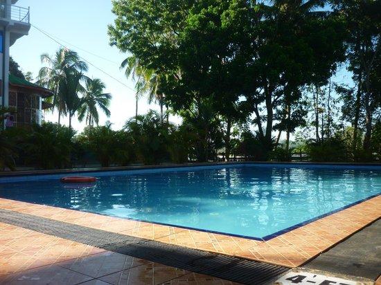 Delma Mount View Hotel: pool