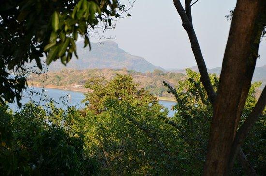 Lake Lodge Hotel: View on the lake