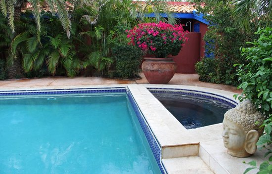La Maison Aruba: Pool and heated jacuzzi