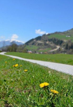Edelweiss Ski Chalet & Spa: Uttendorf Spring