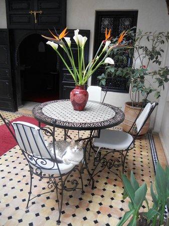 Riad Palais Delia : salle à manger /patio