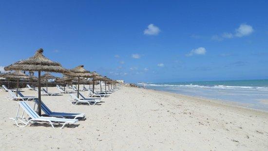 Al Jazira Beach & Spa: plage au levé du soleil
