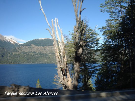 Los Alerces National Park : Puerto chucao