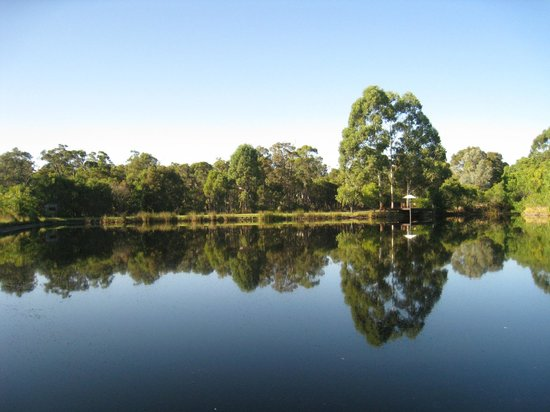 Forest Rise Eco Retreat: There is a lake on the property with a few 'hides' to scope out wilderness as well as a sitting