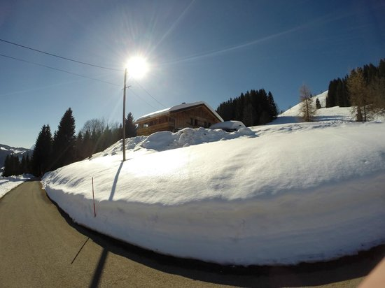 Above All Chalet Co: Our secluded retreat