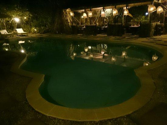 Palm Village Resort & Spa: Pool with lights