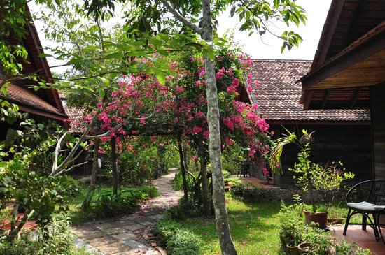 Palm Village Resort & Spa: Flora and Rooms