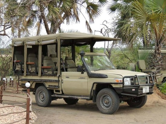 All Time safaris - Day Tours