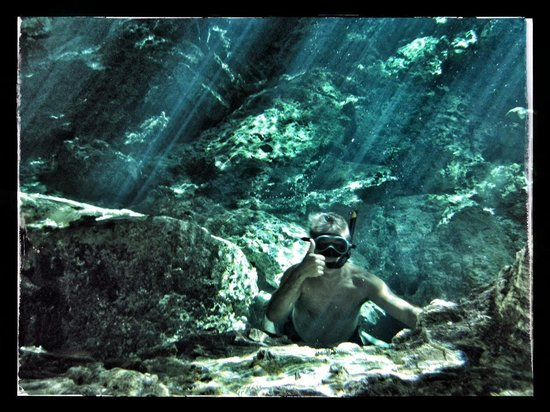 La Calma Casa: in the clear water of the cenote