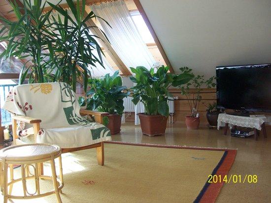 Haus Loidl: Wintergarten