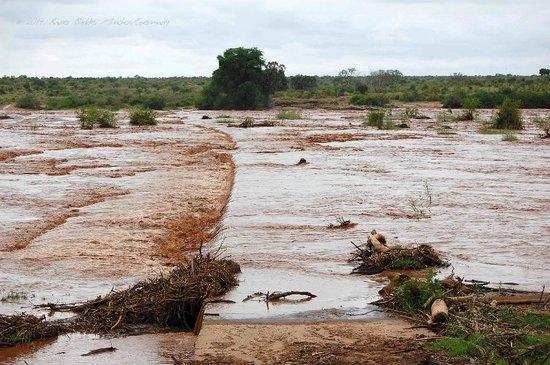 Ithumba Camp : Unser abgebrochener Versuch, den Athi/Galana Fluß zu überqueren