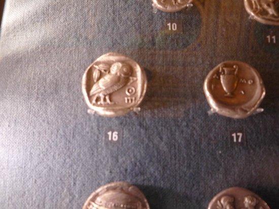 Numismatisches Museum: La civetta in oro
