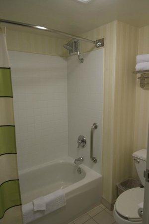 Fairfield Inn Anaheim Resort: Themed Room Shower/Tub Combo