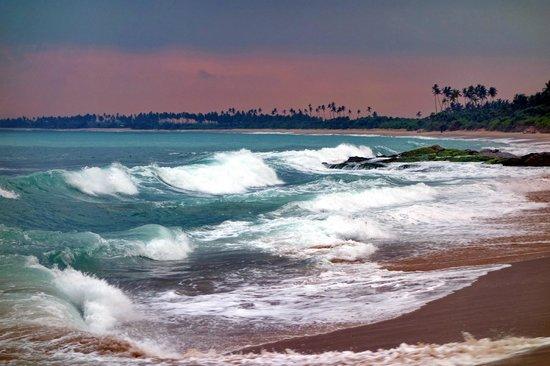 Rekawa, Sri Lanka: Какие краски!