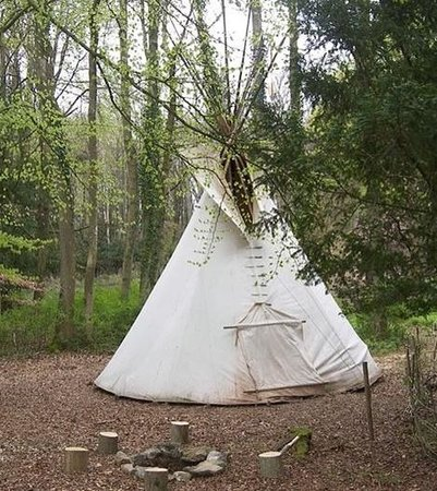 Wolf Paw Tipi Village: Our Tipi at new location