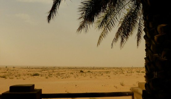 Bab Al Shams Desert Resort & Spa: View from our patio