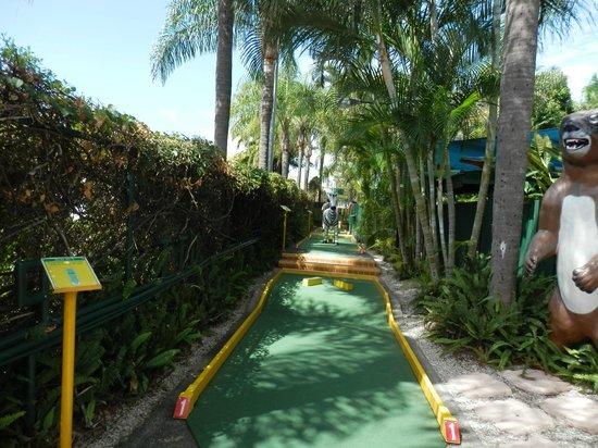 Putt Putt Golf: First hole at Jungle