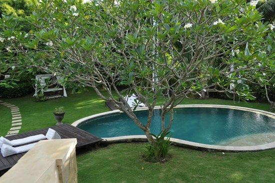 La Villa Mathis : Pool3