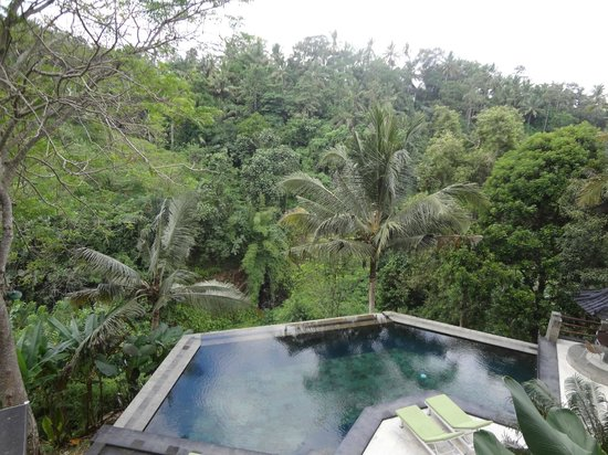 Beji Ubud Resort: jungle
