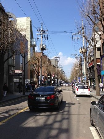 Garosu-gil: Boulevard with ginko trees on the two sides of the road