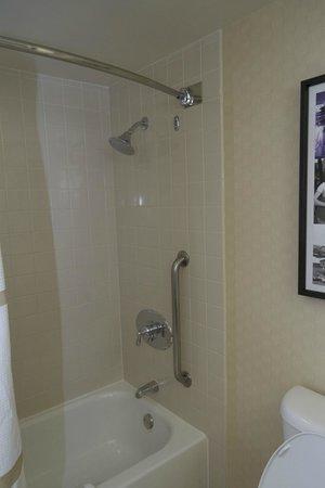 Renaissance Los Angeles Airport Hotel : Jr Suite Shower/Tub