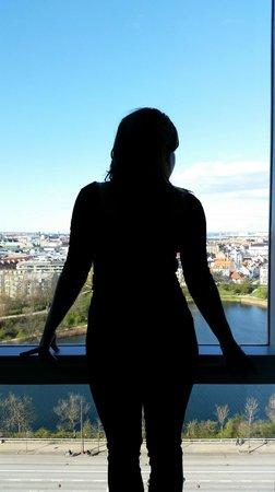 Radisson Blu Scandinavia Hotel, Copenhagen: view