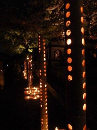Honmyoji Temple: 桜灯篭