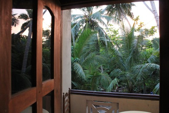 Brinkhouse Guest House: View from the room