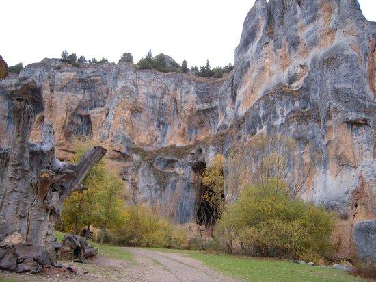 Parque Natural del Cañón del Río Lobos: Cañon entrada cueva