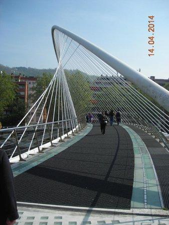 Puente Zubi zuri