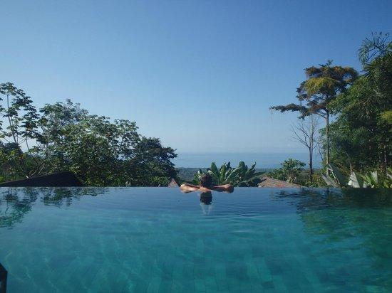 Oxygen Jungle Villas: Pool & view