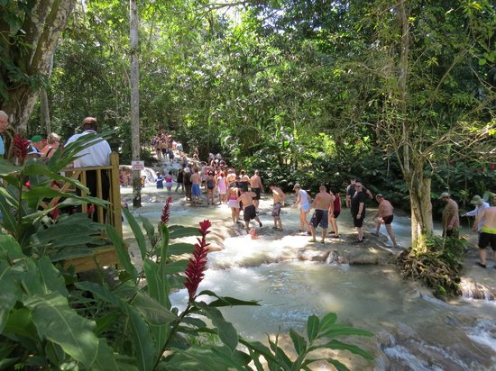 Dunn's River Falls and Park: Ascending the Final Part of the Falls