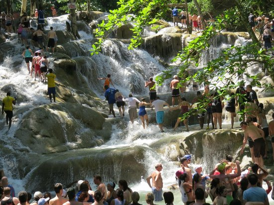 Dunn's River Falls and Park: Near the Top of the Falls