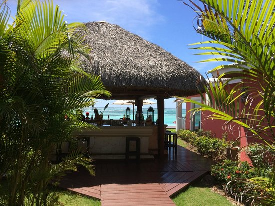 Club Med Punta Cana : bar